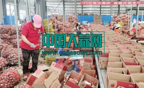 河南大蒜四川柠檬受宠,云集邻居团一周卖出25万斤