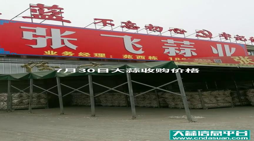 7月30日邳州车夫山张飞蒜业大蒜收购价格