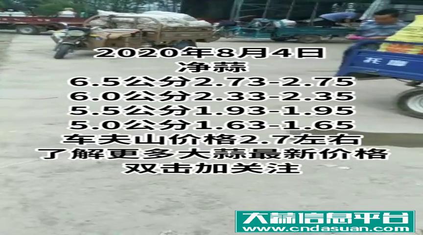 8月4日邳州车夫山主流大蒜收购价格