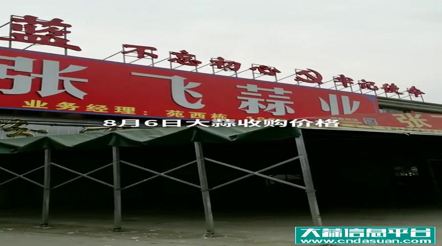 邳州车夫山张飞蒜业8月6日大蒜收购价格